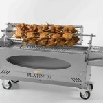 Platinum Chicken Spit